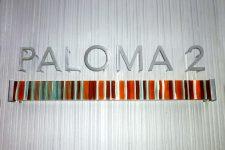 ribbon glass paloma