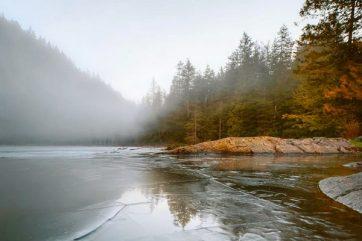 Earth tones keep warm under a cool winter blanket
