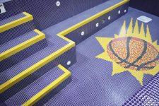 Phoenix Suns' Spa